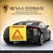 Fegasus Magnetic Safety Banner